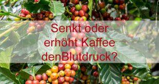 Kann Kaffe den Blutdruck senken?